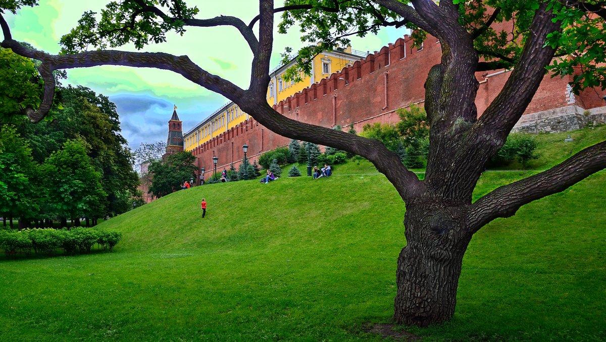 Александровский сад. - kolin marsh