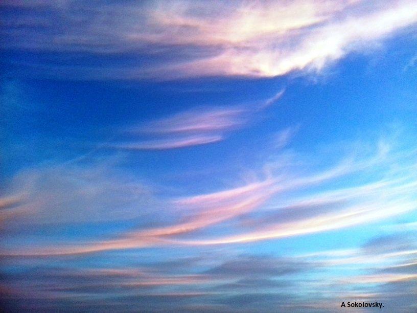 небесное волнение - Anna Sokolovsky