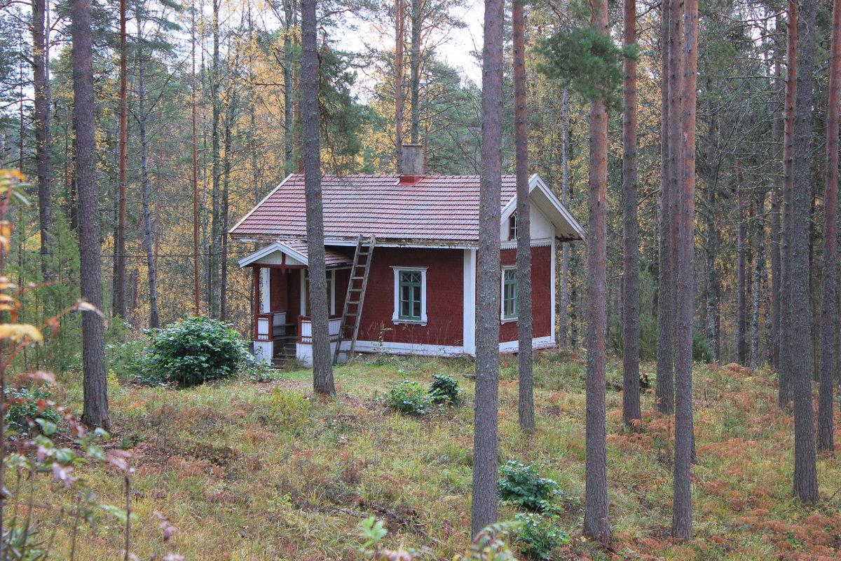 Домик в лесу - Марина Домосилецкая