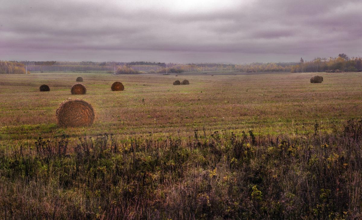 Поздняя осень. Грачи улетели, Лес обнажился, поля опустели.(Н. Некрасов) - Алла ************