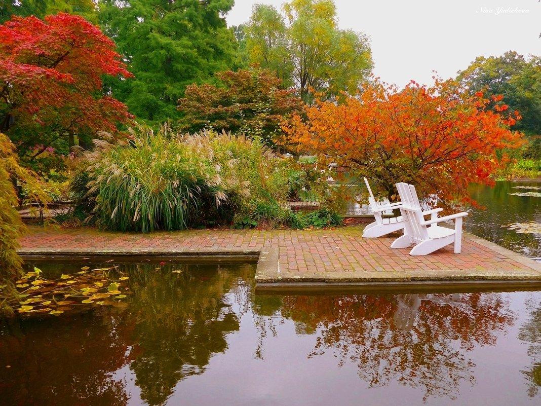 Уголок отдыха в парке цветов - Nina Yudicheva