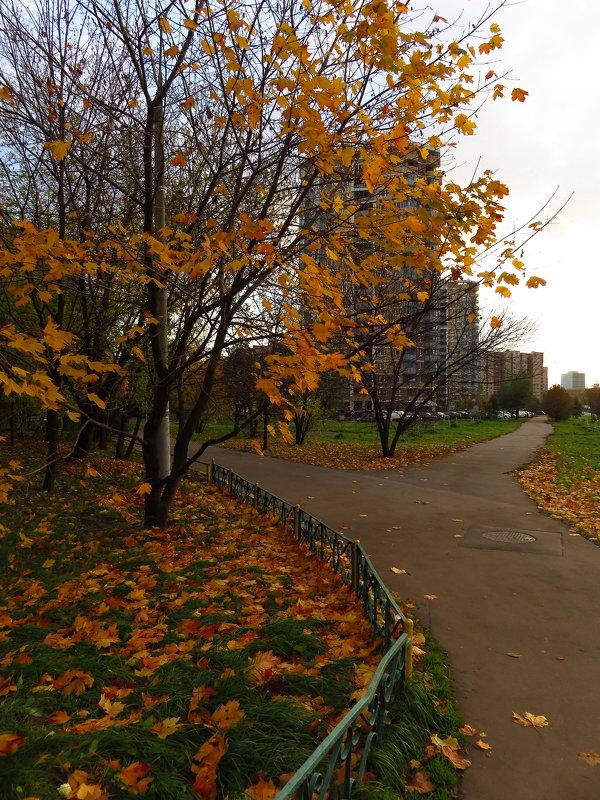 Москва октябрьская - Андрей Лукьянов