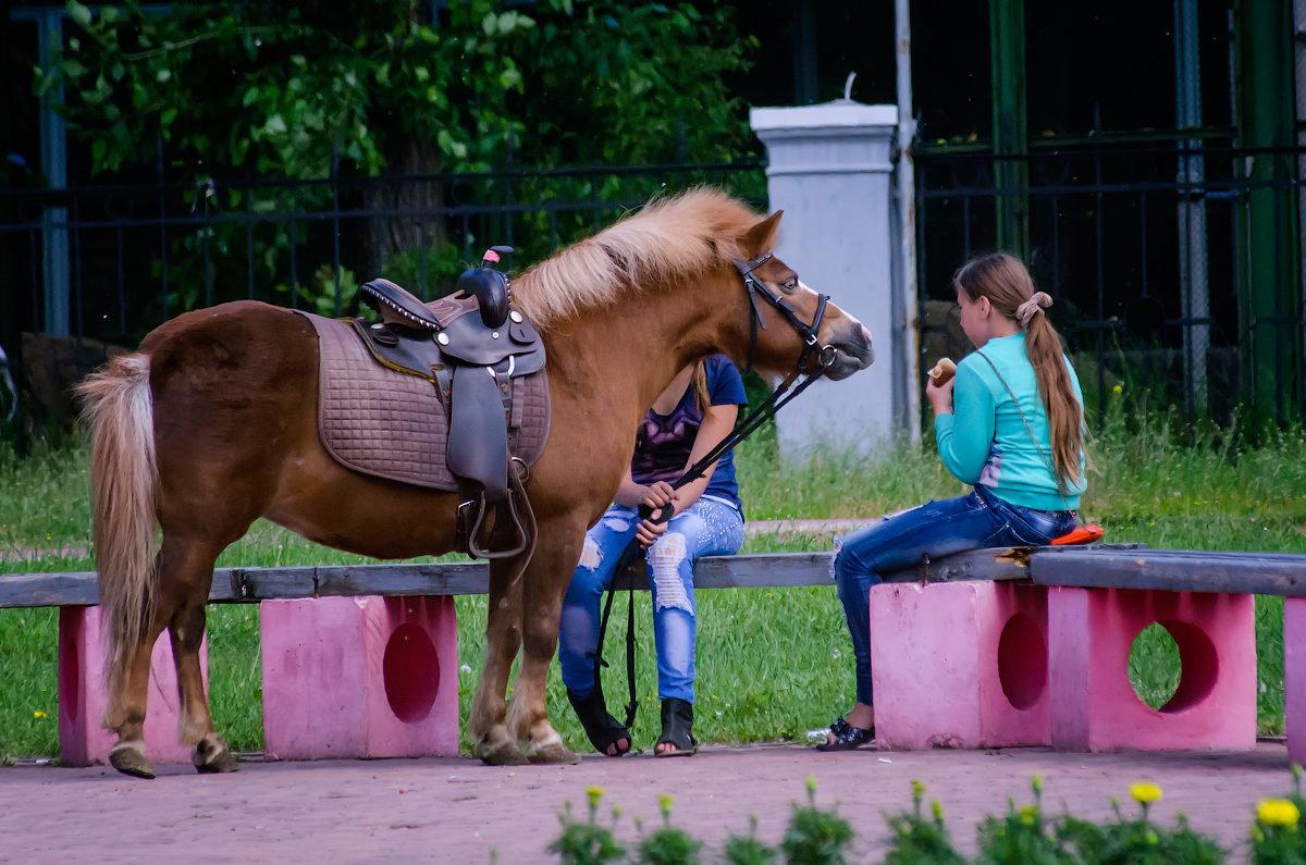 Девушка и лошадка. - Виктор Иванович