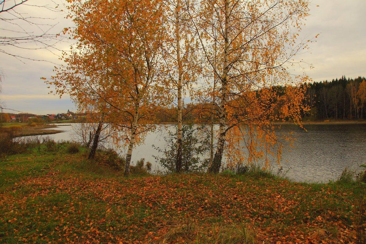 осень - сергей