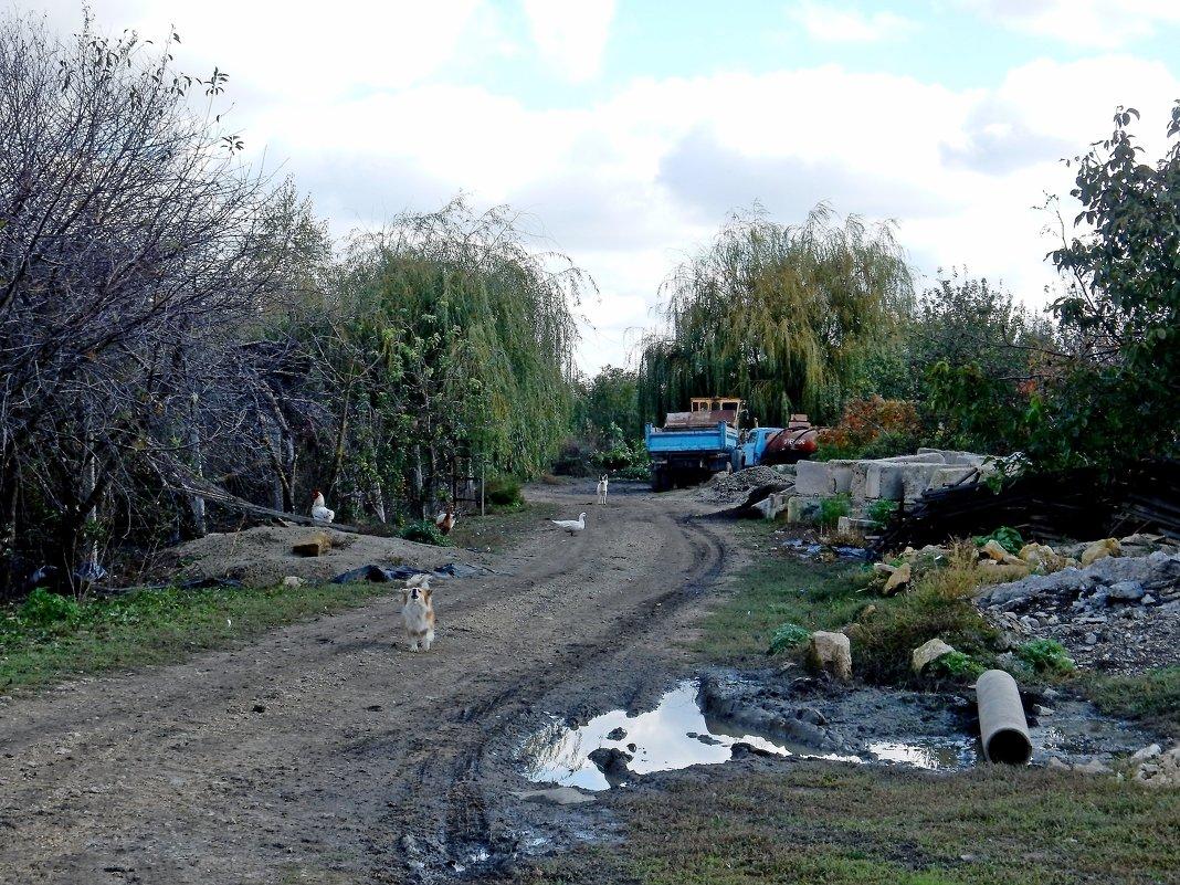 На дальнем хуторе - Владимир