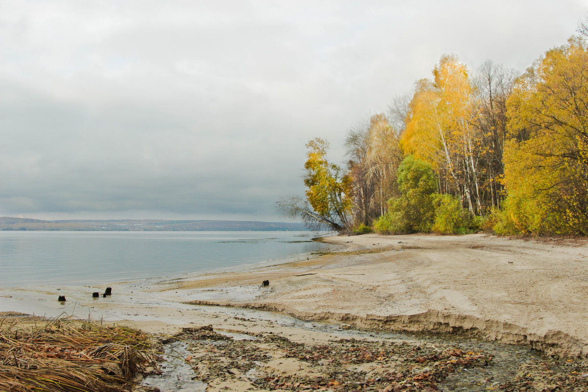 осень - Sage Ekchard
