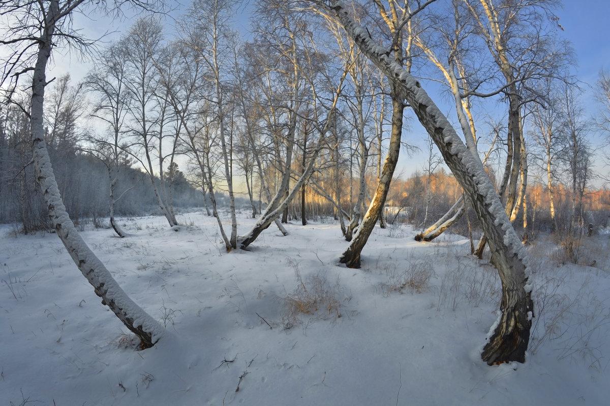 короток зимний день - Евгений Кокухин