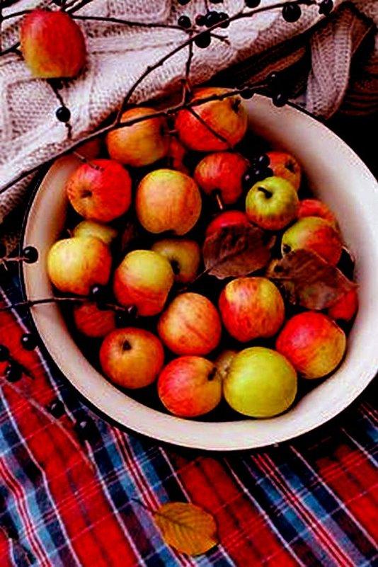 Яблоки в саду - Галина Фуникова