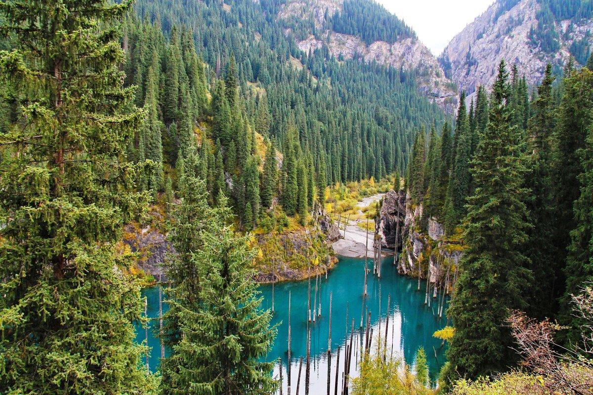 Озеро Каинды в Казахстане - Maxim Claytor