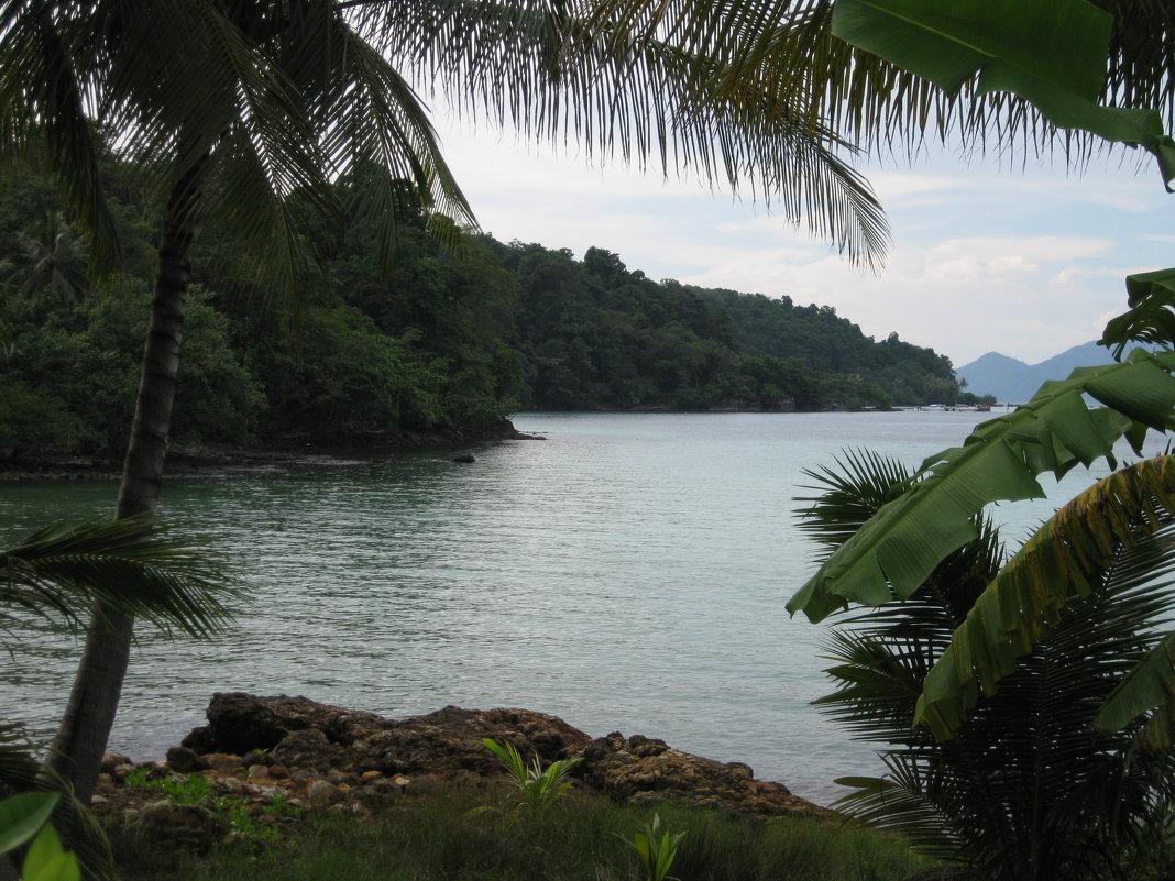 Крошечный остров-заповедник - Лариса (Phinikia) Двойникова