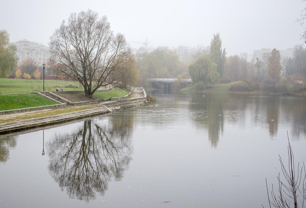 Пейзаж с легким туманом - Сергей Тарабара
