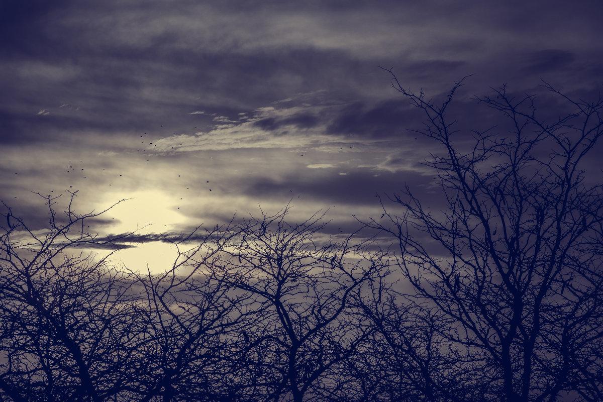 мрачное небо - Танюсик *****
