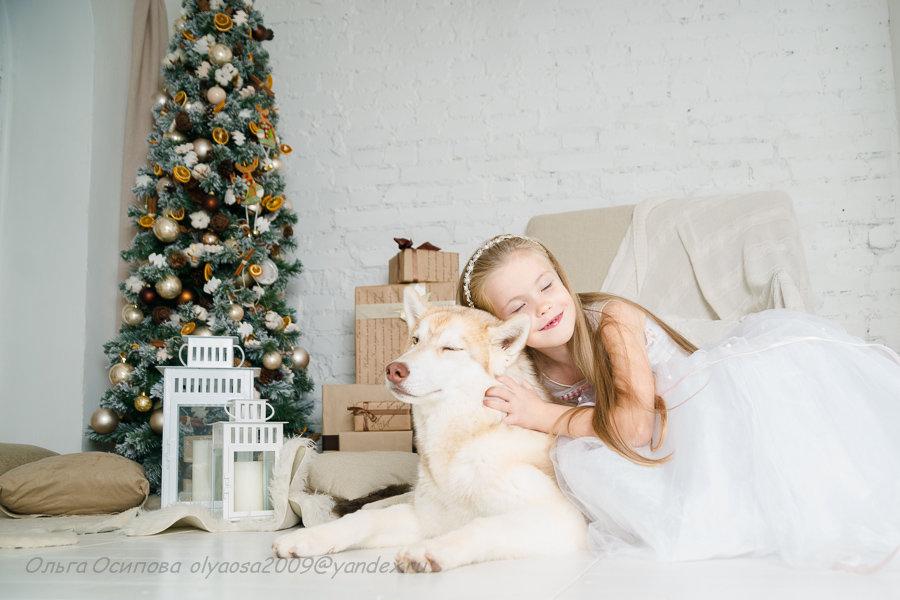 Принцесса Марго в Новогодней сказке - Ольга Осипова