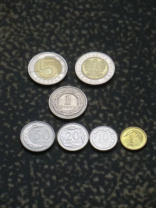 Мышка из польских монет... - Владимир Павлов