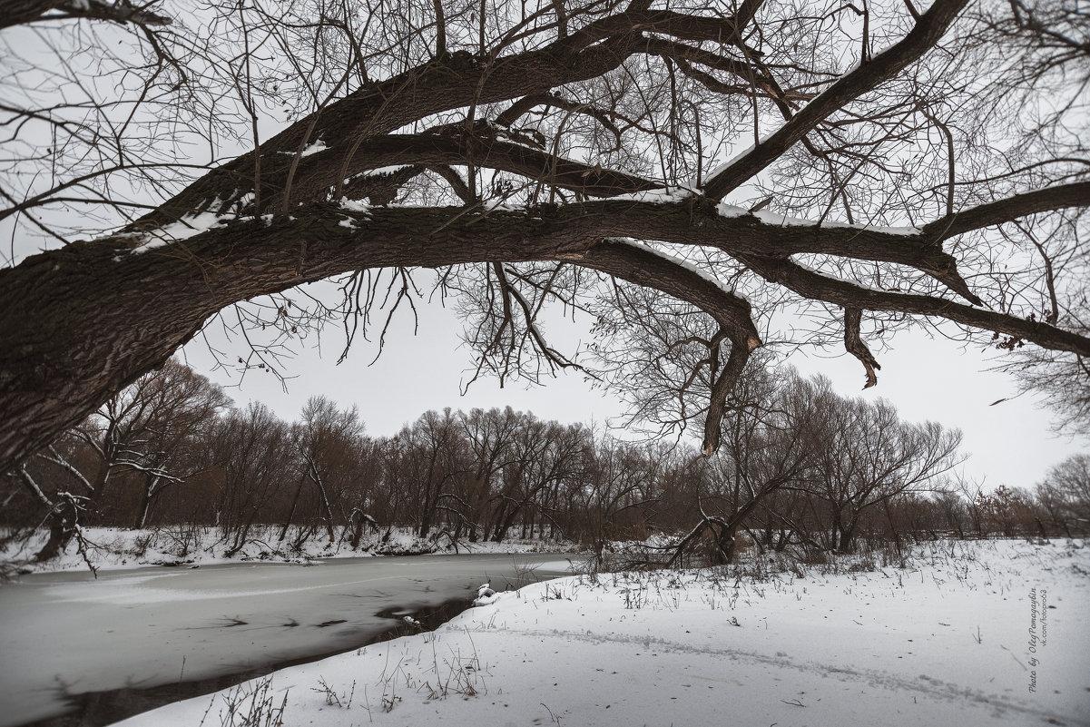 Зимняя осень - Олег Помогайбин