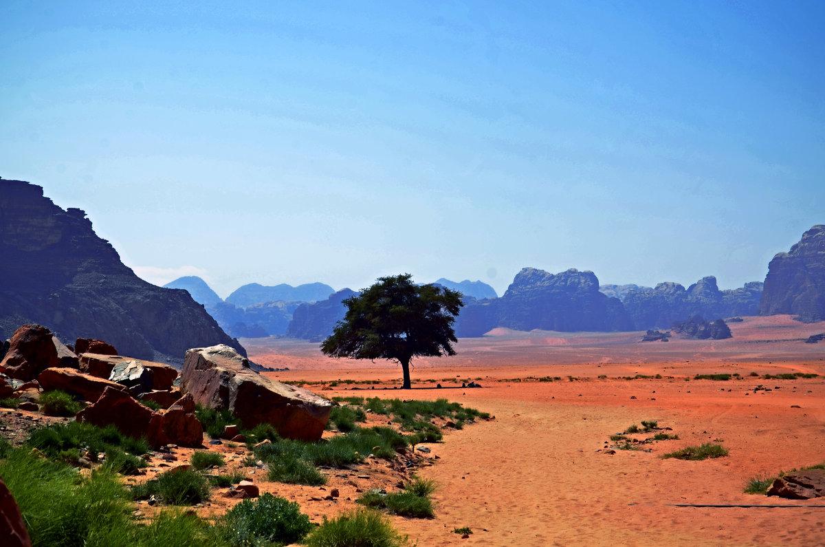 Вади Рам – марсианская пустыня в Иордании... - Валентина Потулова