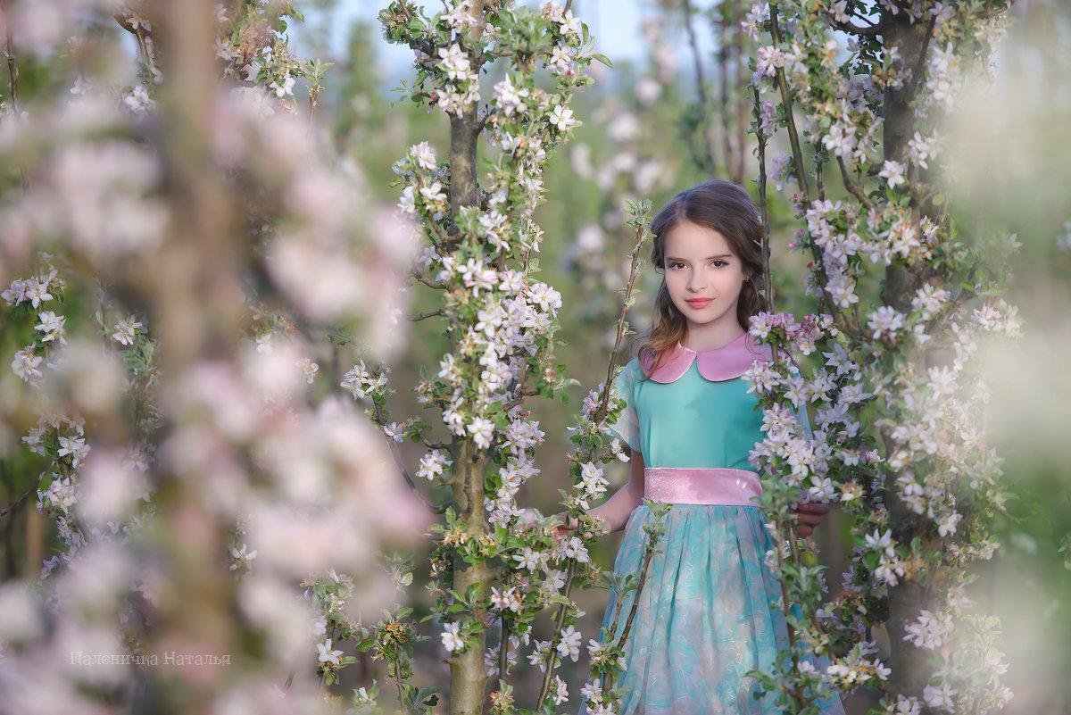 Яблоневый сад - Наталья Паленичка