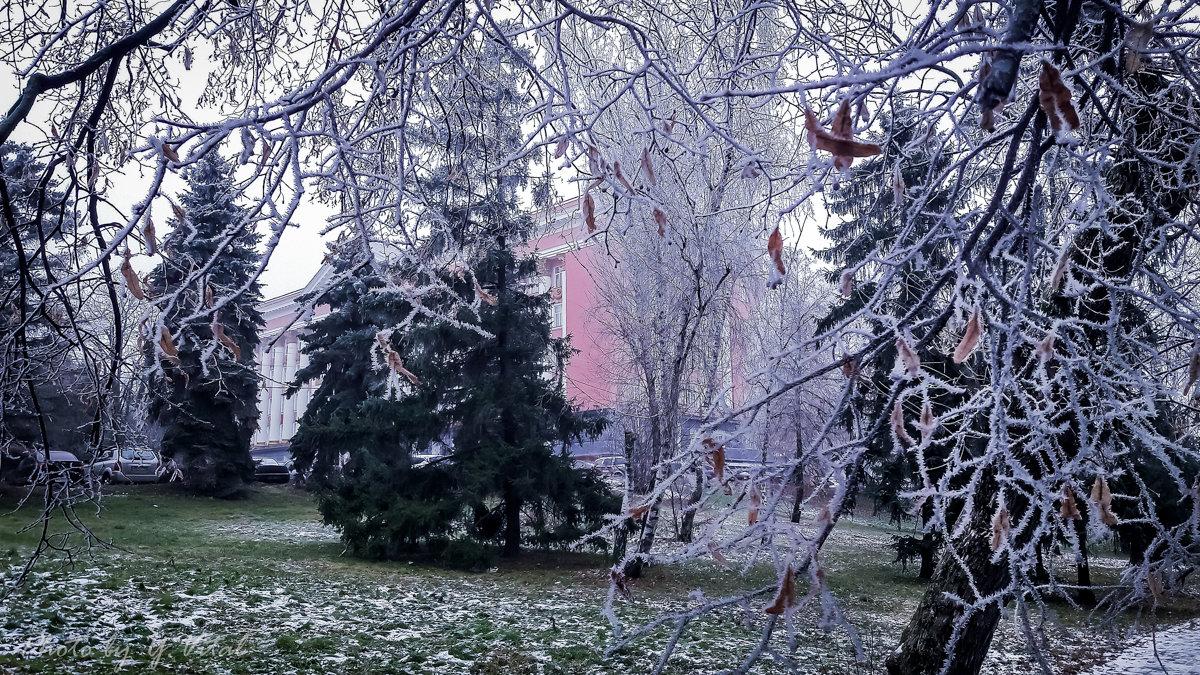 25 ноября... Утро... - Юлия Копыткина