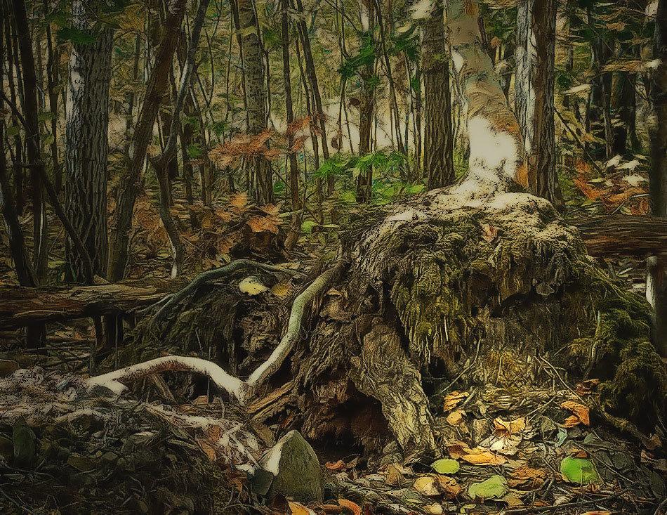выручка: Экспорт уничтожение леса в берендеевом царстве малышам постоянно