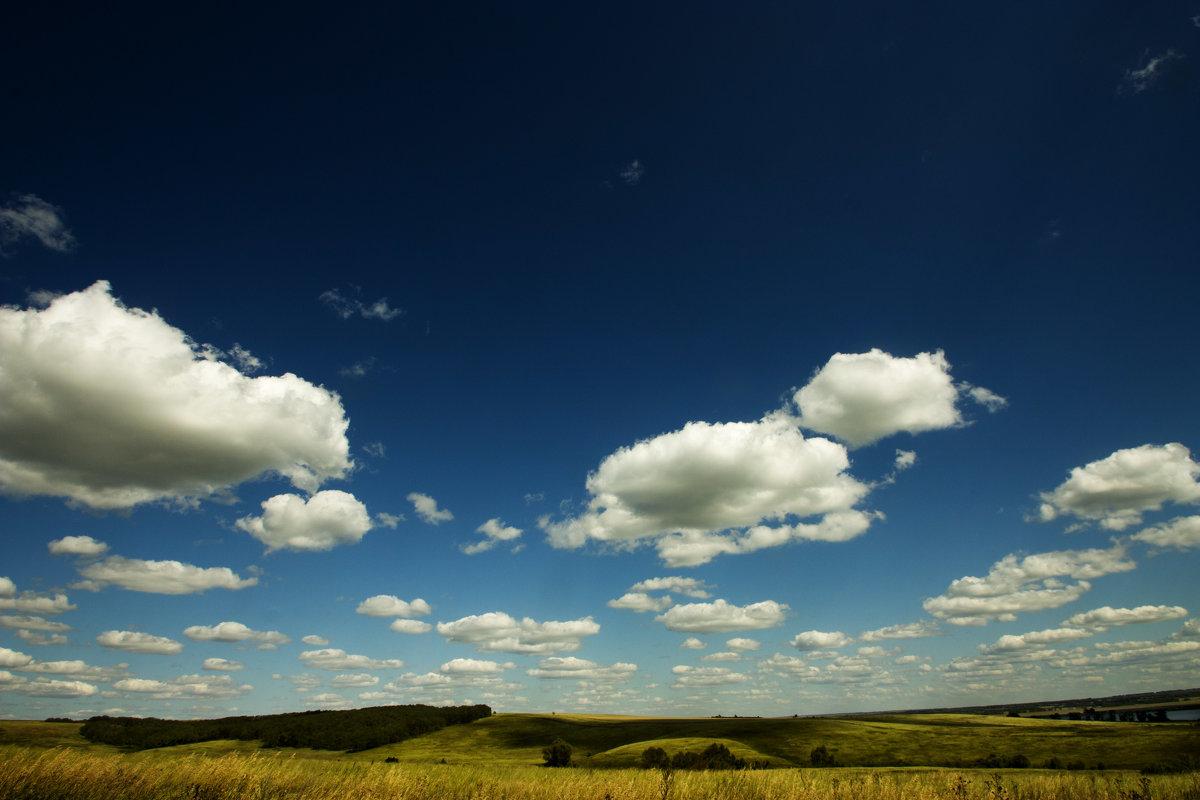 Тени от облаков на поле - Оксана Сергеева