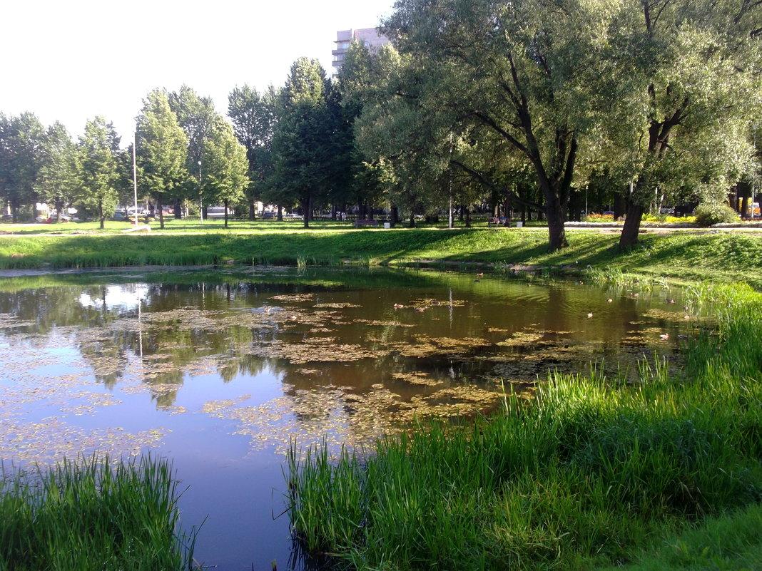 В парке - Svetlana Lyaxovich