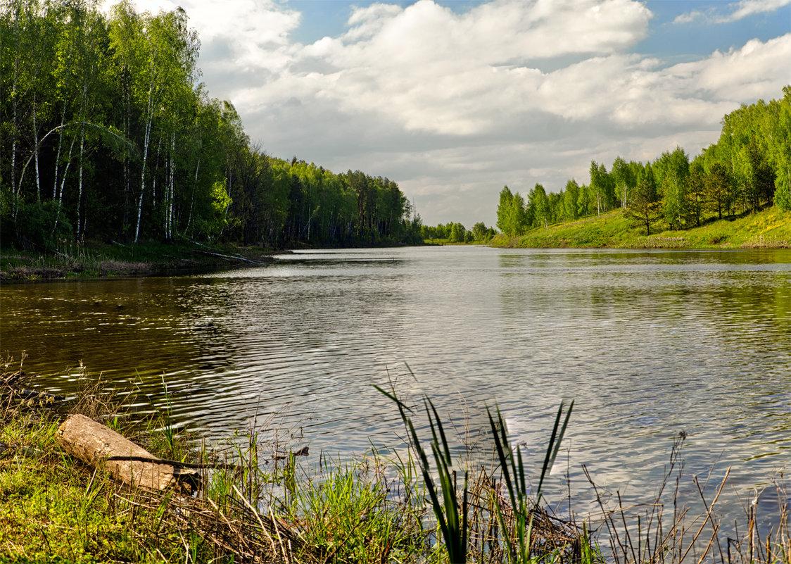 Лесное озеро - Александр Березуцкий (nevant60)