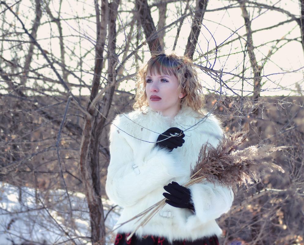 Зимний день - Ольга Щербакова