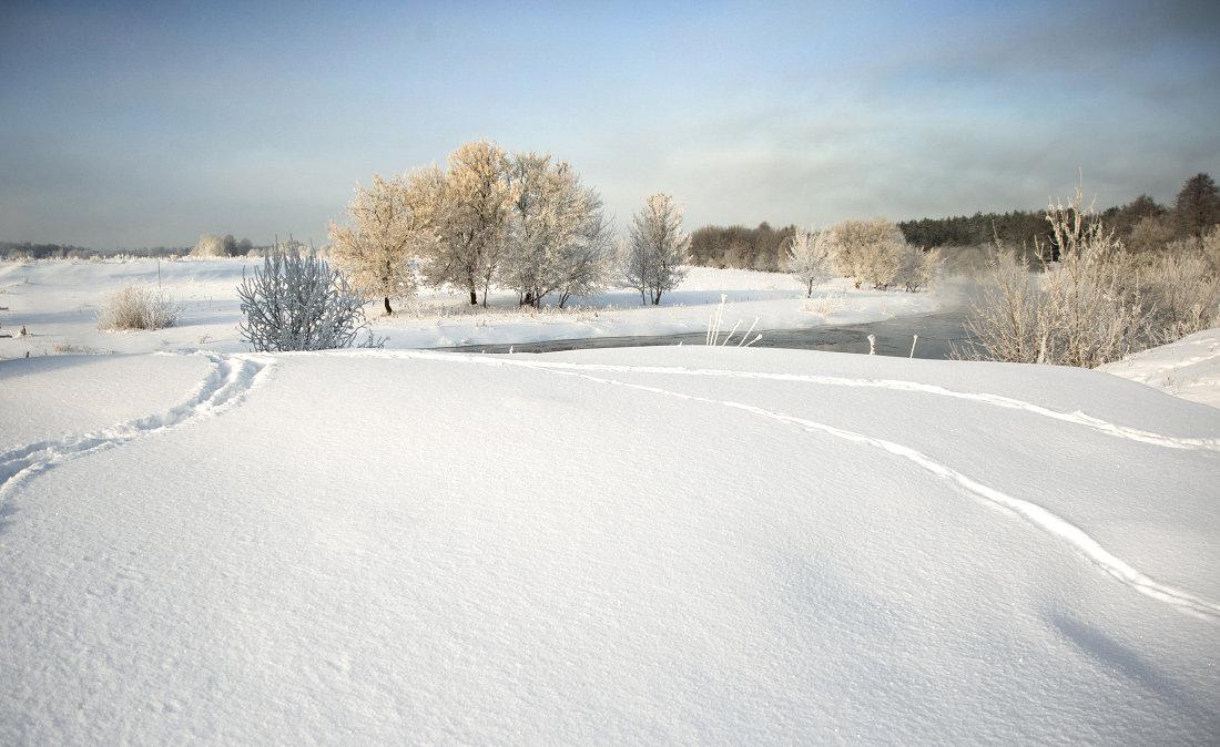 морозное утро №4 - Владимир Носов