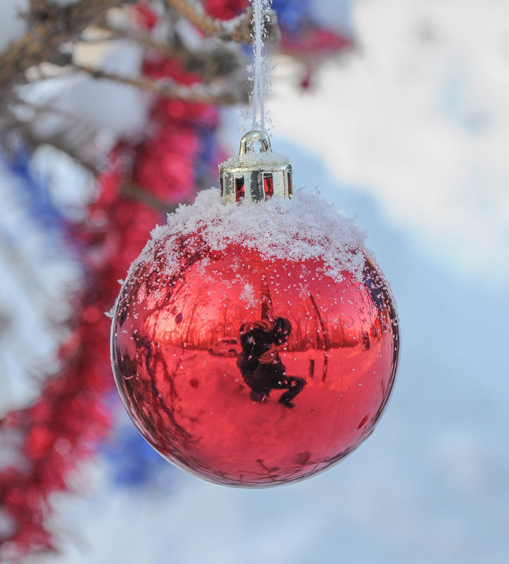 Новогодние игрушки на елочке около дома - Сергей Тагиров