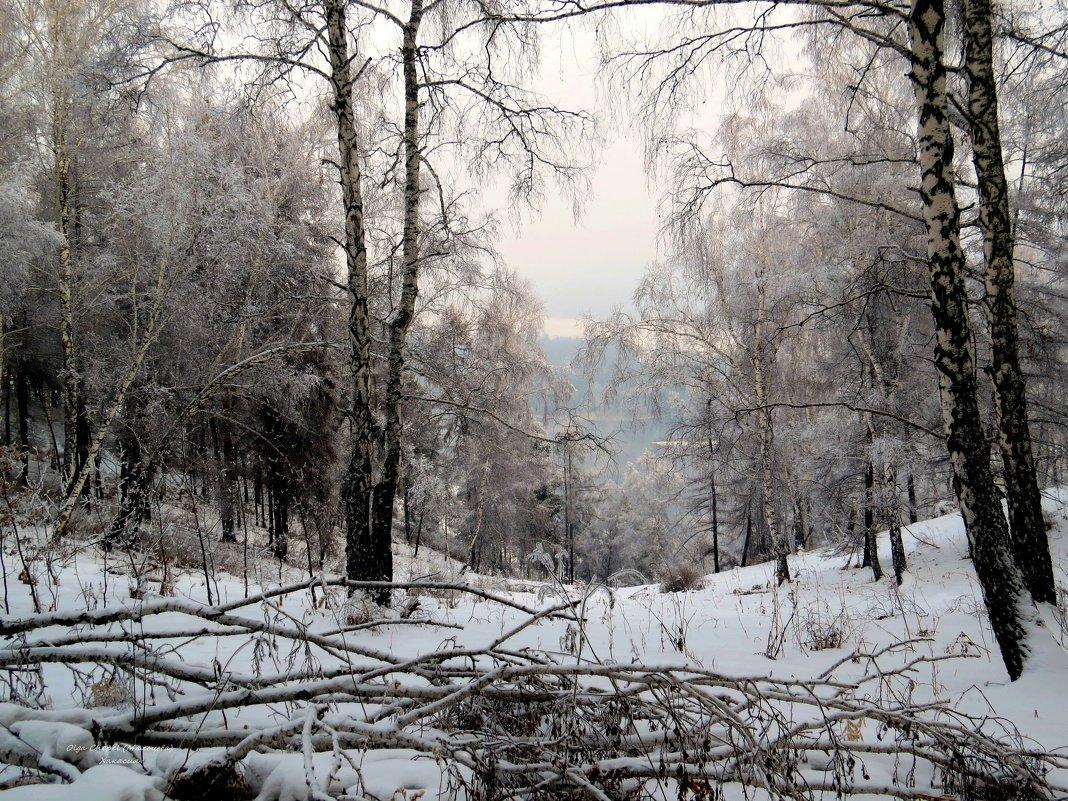 В горах зимой... - MaOla ***
