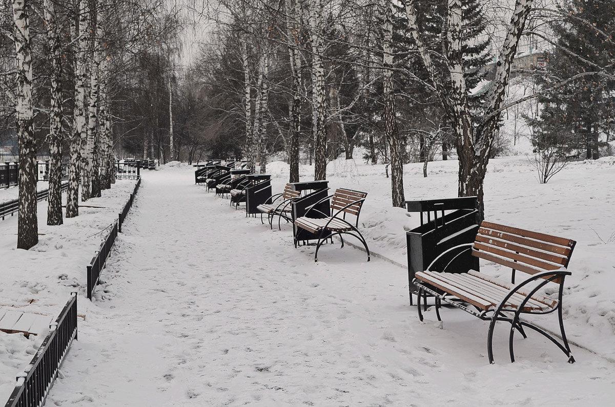 Городская зима - Татьяна Соловьева