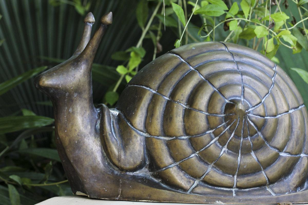 Фотография, построенная по принципу спирали Фибоначчи - Анна Исенева