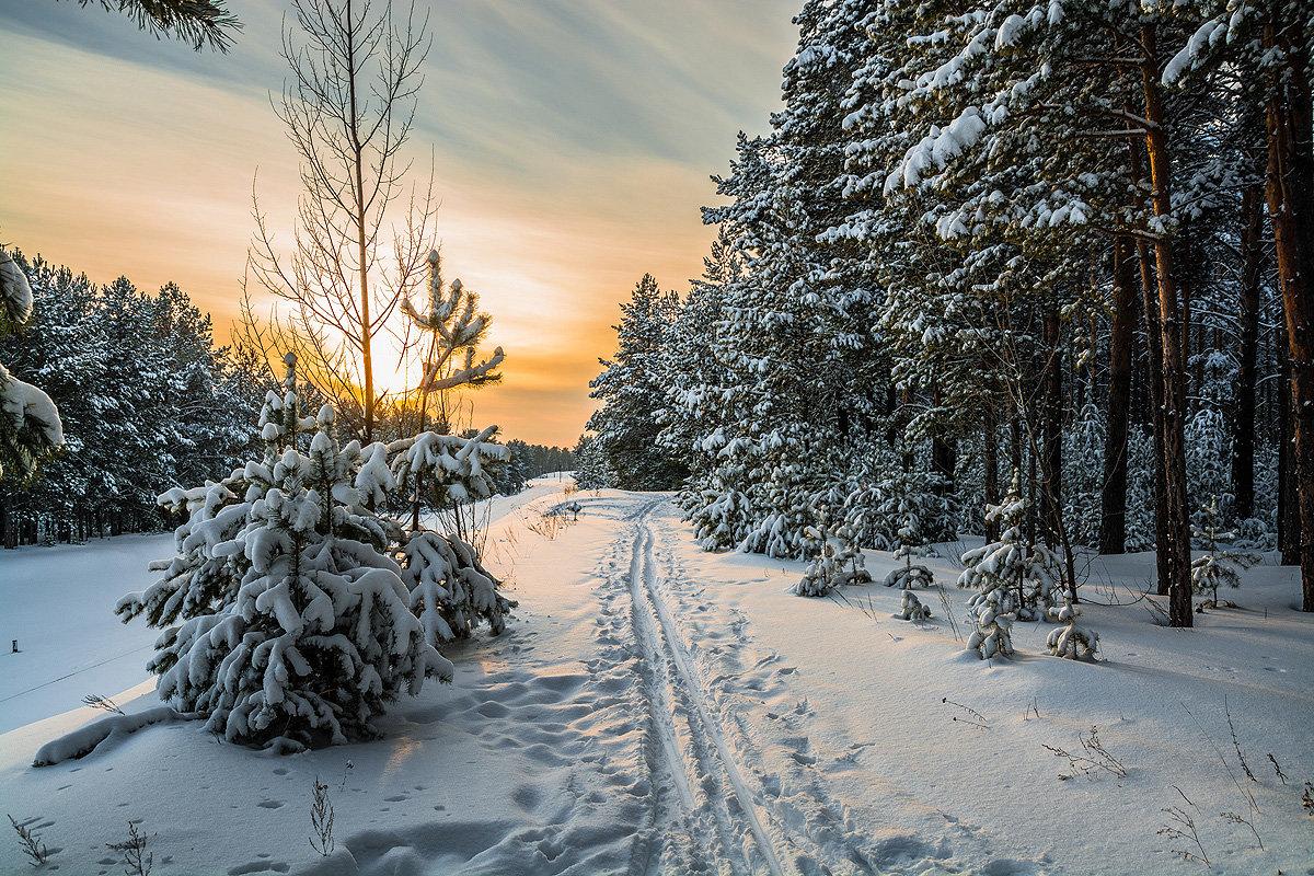 Лыжня зовёт! - Андрей Поляков