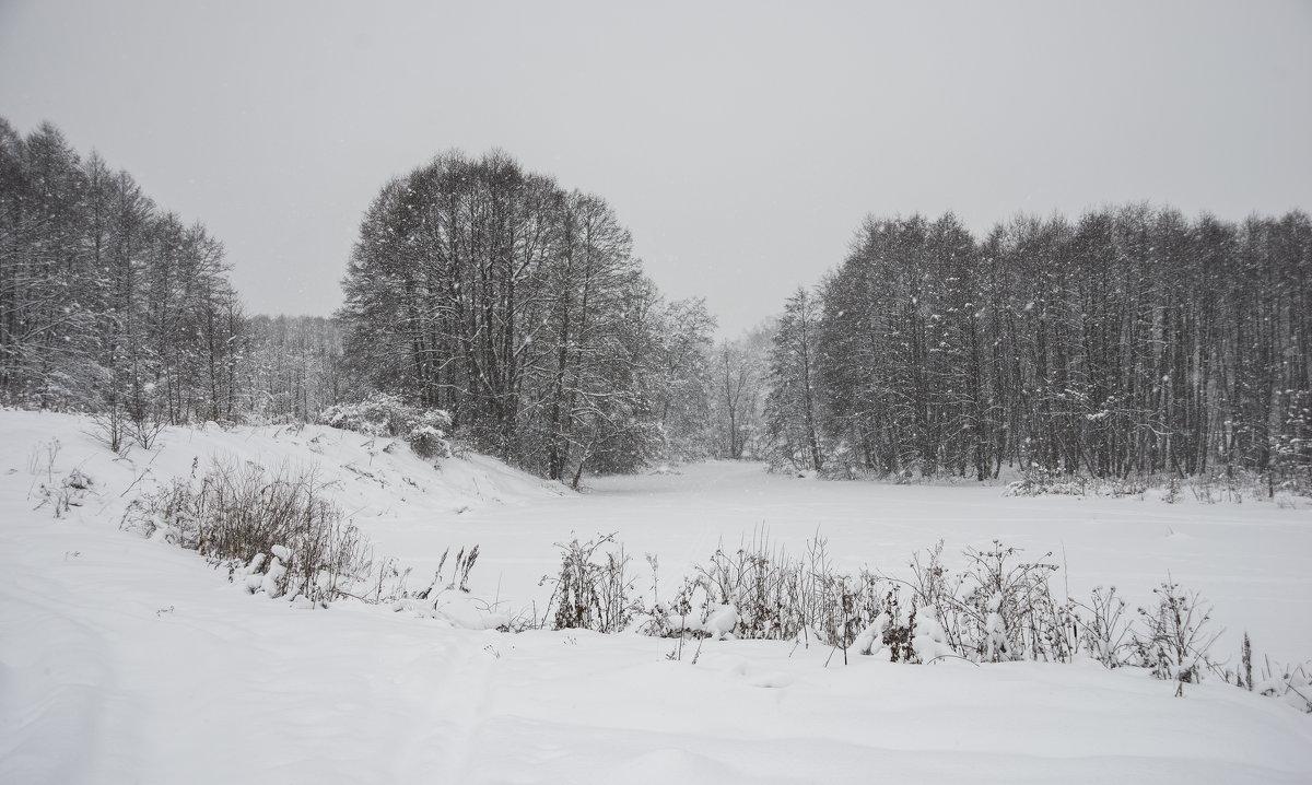 Пейзаж с падающим снегом - Михаил Онипенко