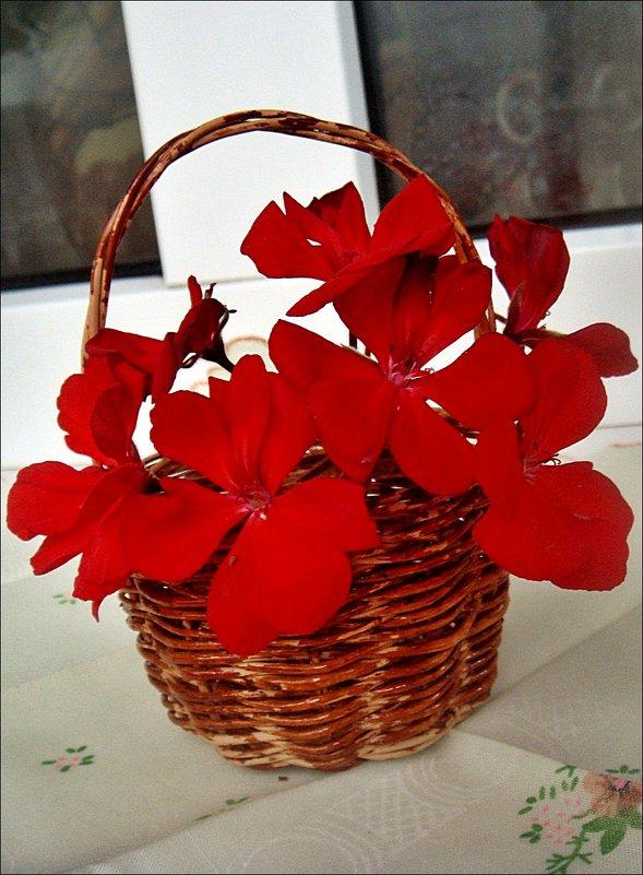 Корзиночка с цветами герани - Нина Корешкова