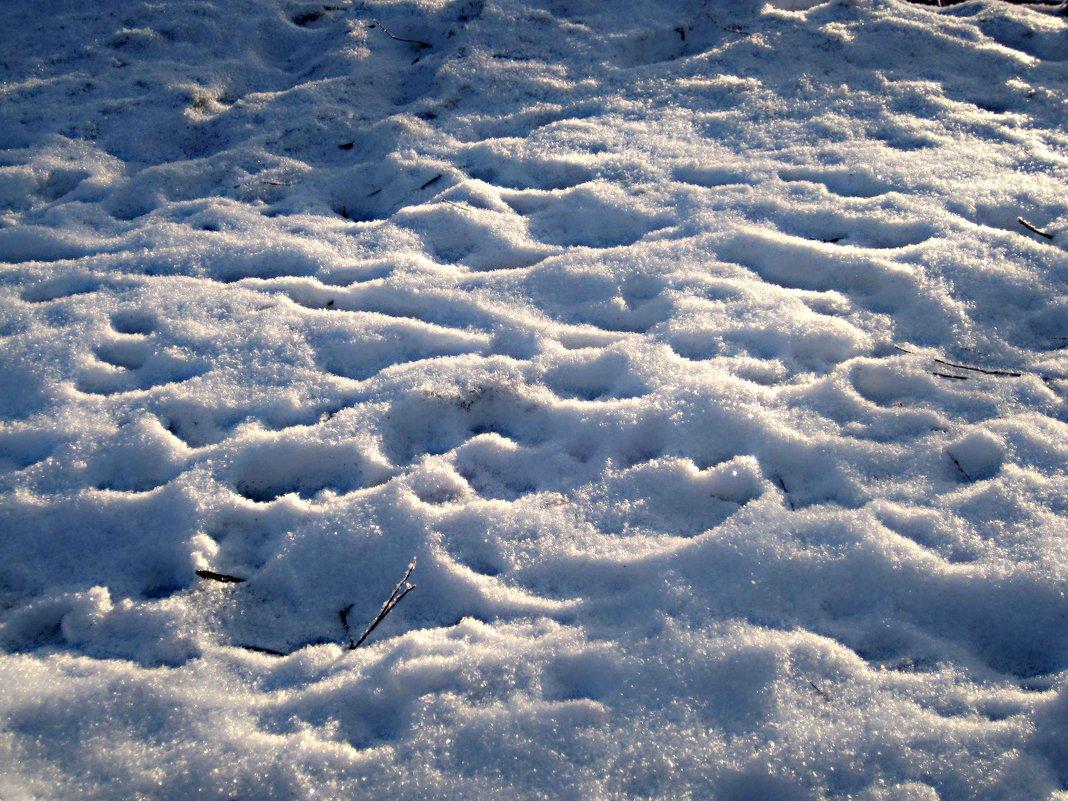 снег искрится на морозе - Елена Семигина