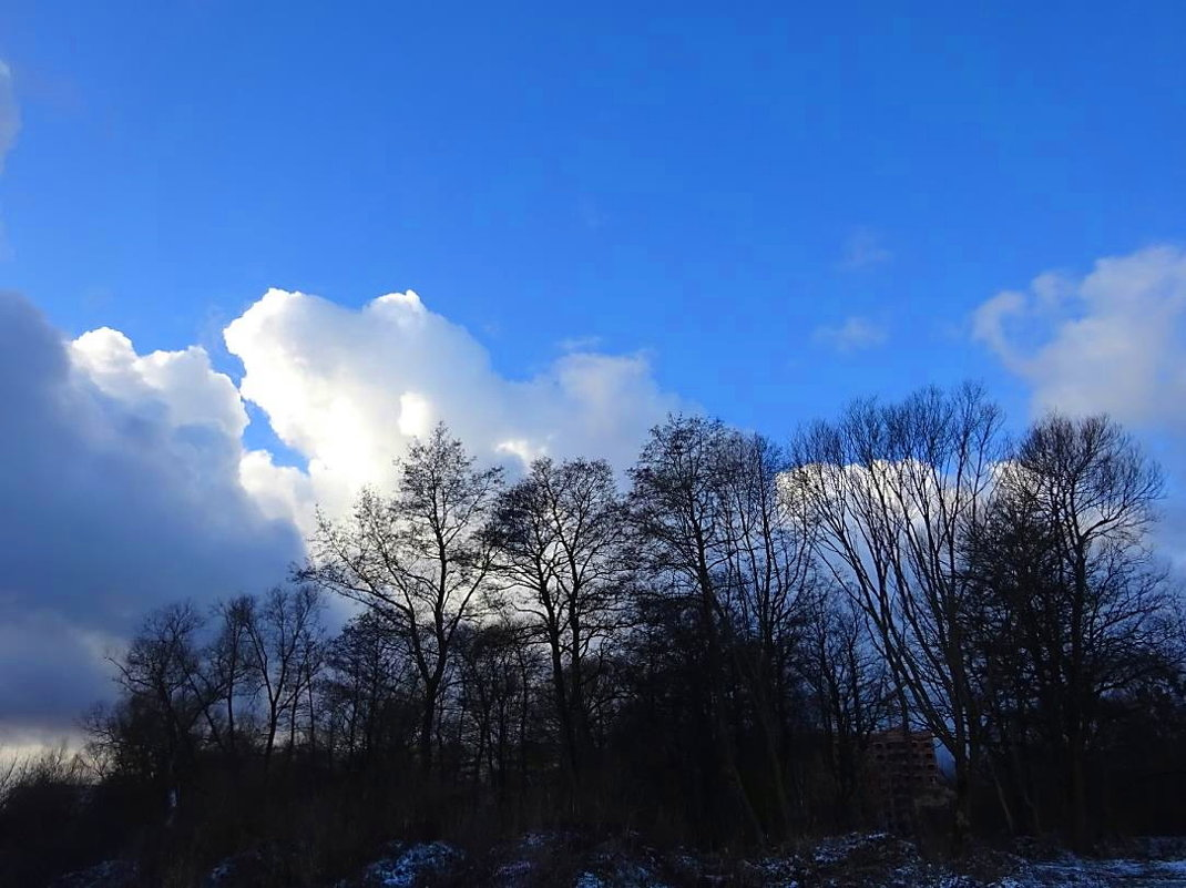 Январское небо - Маргарита Батырева
