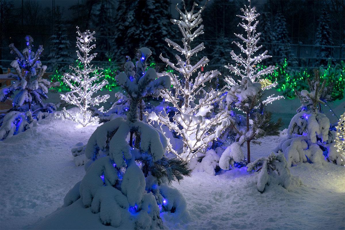 Накануне Рождества - Алексей Головин
