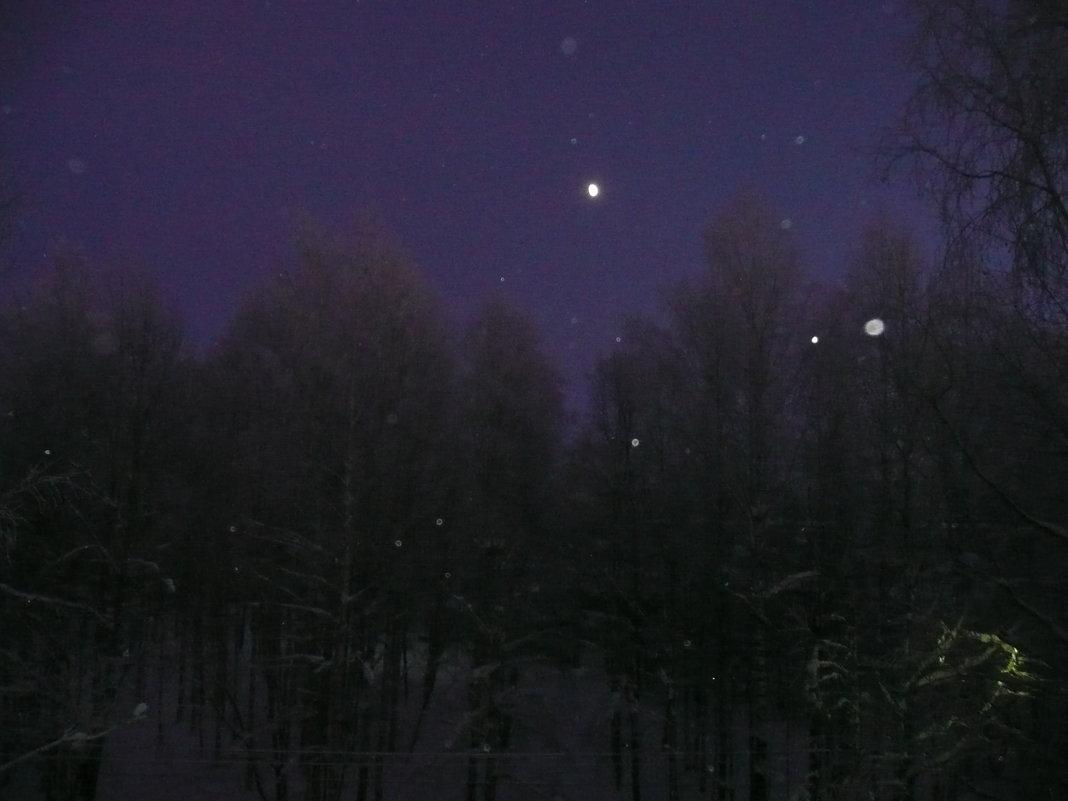 Морозный вечер  -38 - Виктор