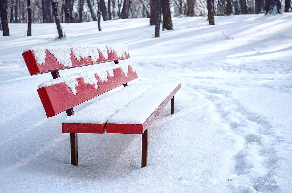 В парке... - Елена Данько