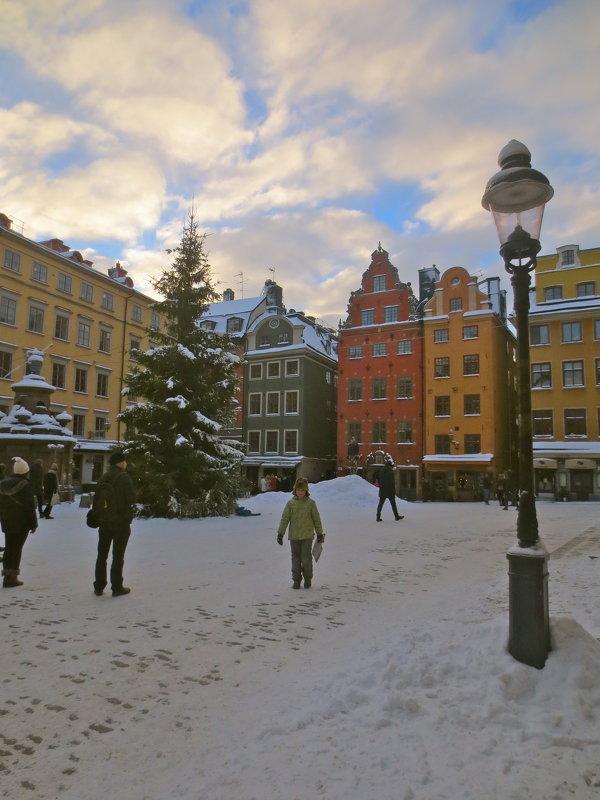 классика рождественского Стокгольма - Елена