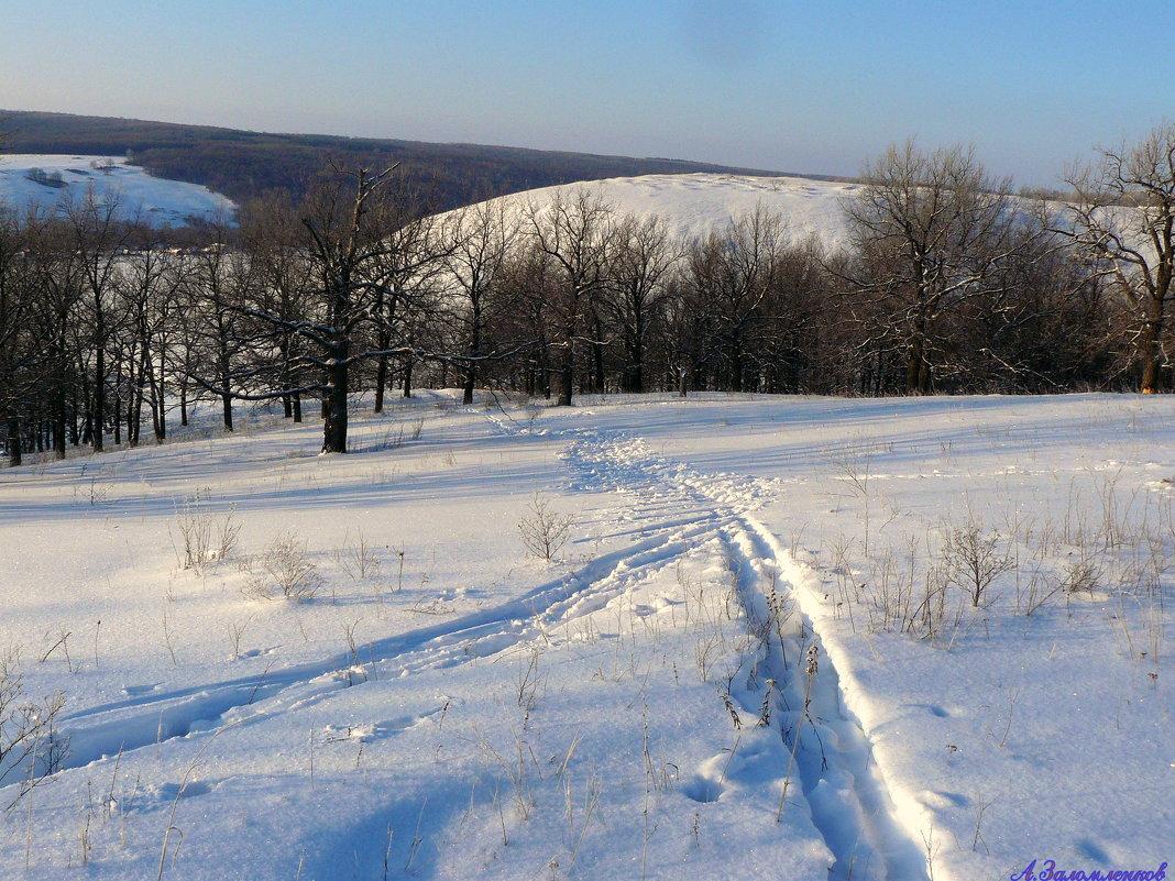 Обновить лыжню! - Андрей Заломленков
