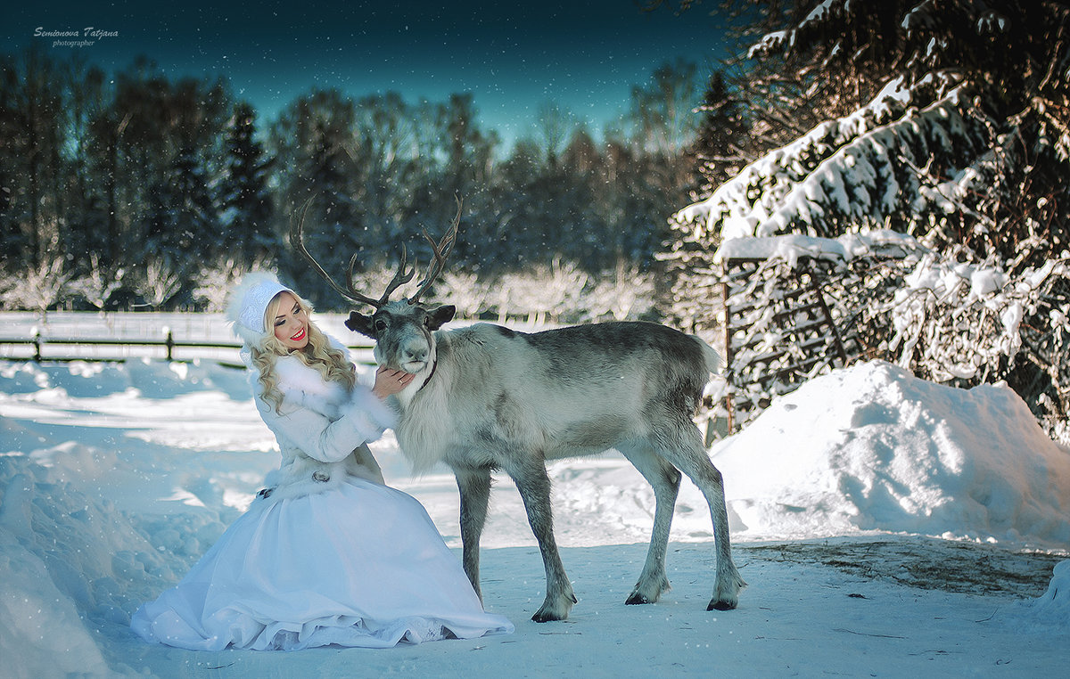 Зима и северный олень - Татьяна Семёнова