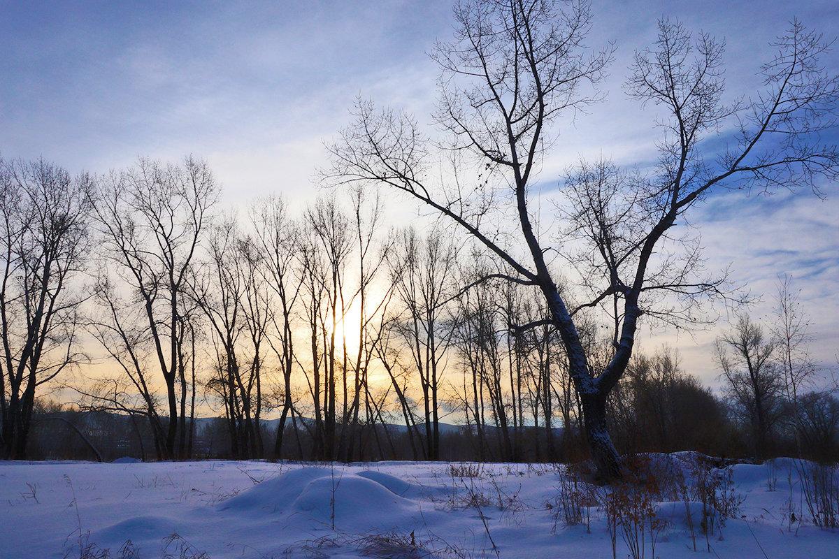 Зимний день на исходе - Екатерина Торганская