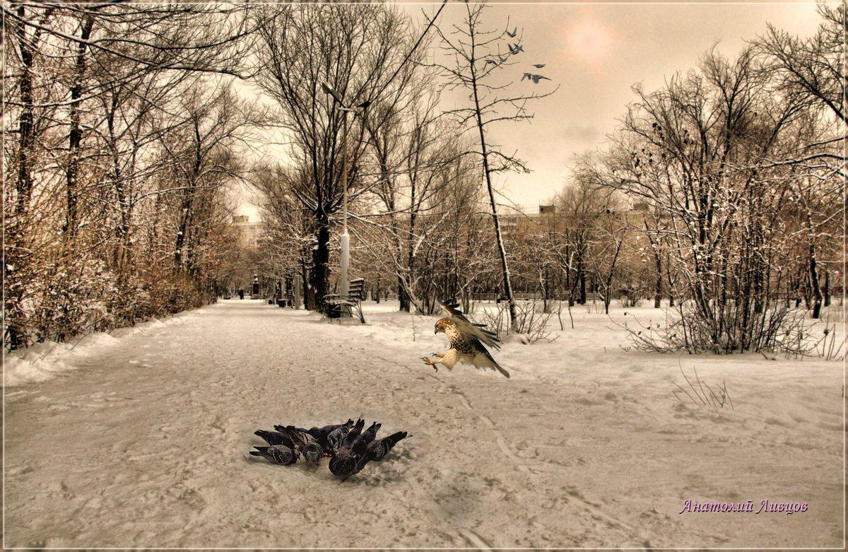 Внезапность залог успеха в любой атаке. - Anatol Livtsov