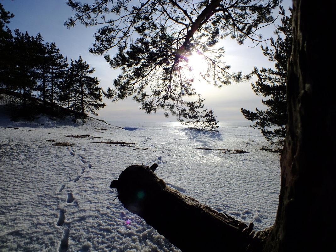Зимний пейзаж - Андрей Кротов