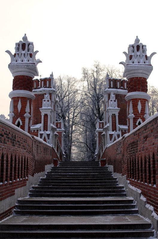 Фигурный мост - Татьяна Колганова