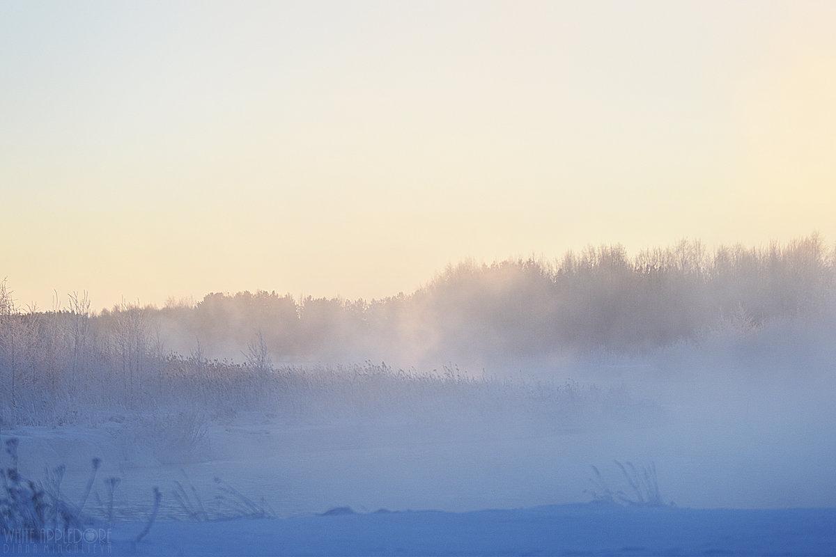 Северный пейзаж - Диана