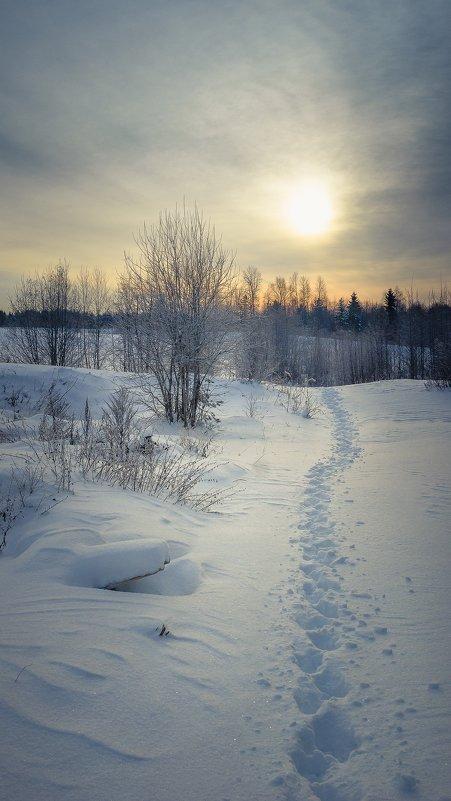 Навстречу солнцу... - Федор Кованский