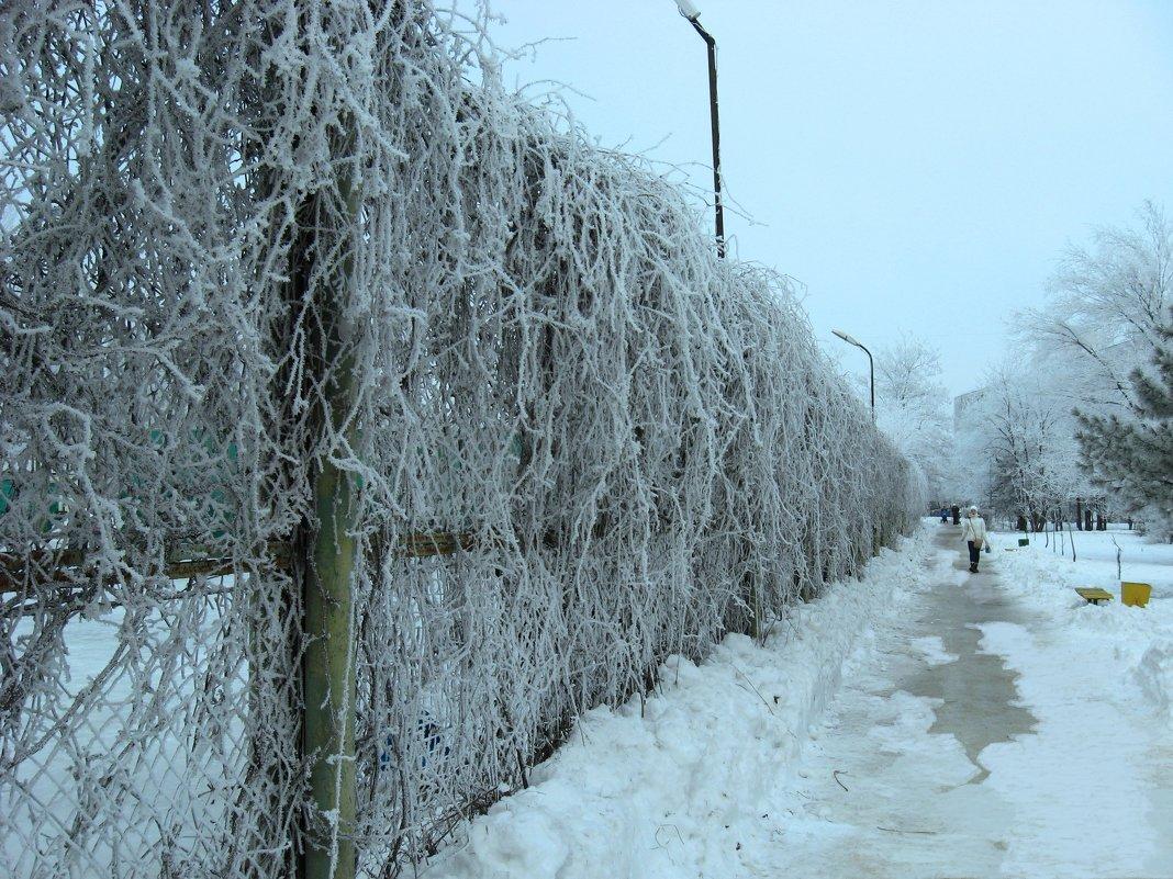 Зимние стеночки ) - Natali